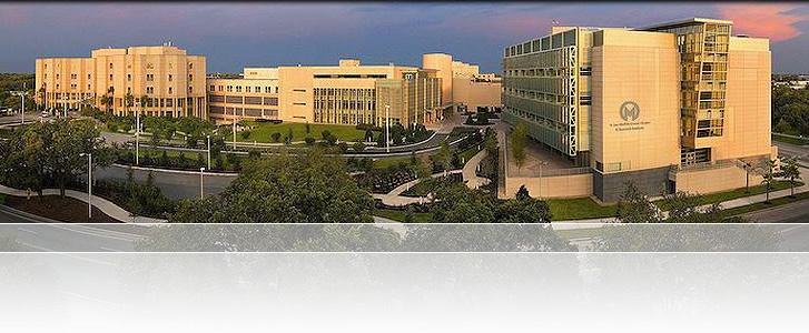 Cancer Centers : Institute for Translational Oncology Research | Best image of moffitt cancer center